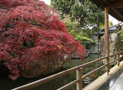 fuefukigawa-bridge.png